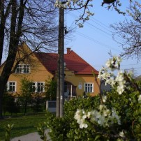 Palivové drevo / ZŠ Košariská